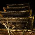 ライトアップ_八坂の塔