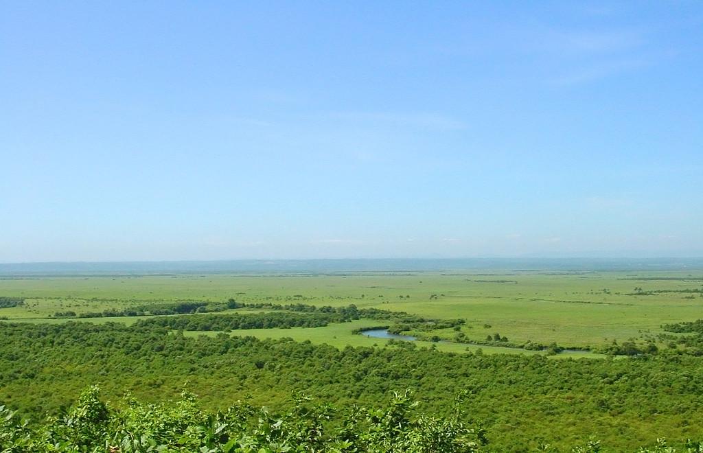 20010820釧路湿原1