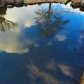 水に映った青空