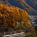 Photos: 木曽路を往く。