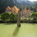 写真: 明池