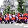 写真: 夏龍颯爽_浦和よさこい2008_39