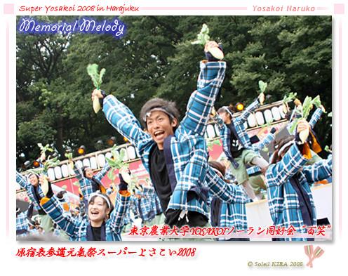 "Photos: 東京農業大学YOSAKOIソーラン同好会""百笑""_スーパーよさこい2008_01"