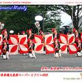 """写真: 京町・新京橋""""ゑびすしばてん連""""_スーパーよさこい2008_01"""