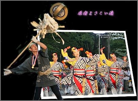 原宿よさこい連_スーパーよさこい2008