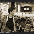 写真: よさこい煌_東京よさこい2008_02