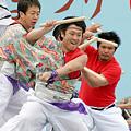 踊るBAKA!TOKYO_川崎大師厄除けよさこい_12