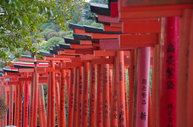 根津神社 (6)