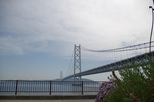 明石海峡大橋 (8)