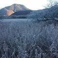 Photos: 戦場ヶ原「日光」霧氷