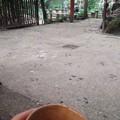 茶店でひといき