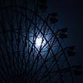 Photos: 静寂の夜