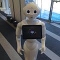 Photos: ソフトバンク名古屋店にいた、ロボット「Pepper」 - 01