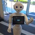 Photos: ソフトバンク名古屋店にいた、ロボット「Pepper」 - 05