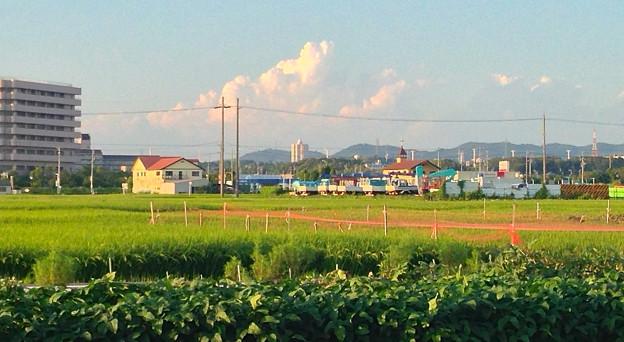 写真: 発達した入道雲 - 2