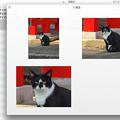 Mac OS X Mavericks:複数画像選択してQuickLook - 3(一覧表示)