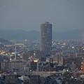 写真: 名古屋テレビ塔からの夜景 No - 05:ザ・シーン城北