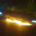 写真: 東山動植物園 紅葉ライトアップ 2015 No - 75:ベンチの下にもイルミネーション