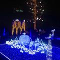 Photos: フラリエのクリスマスイルミネーション 2015「La Luce Blu」No - 8