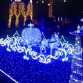 Photos: フラリエのクリスマスイルミネーション 2015「La Luce Blu」No - 10