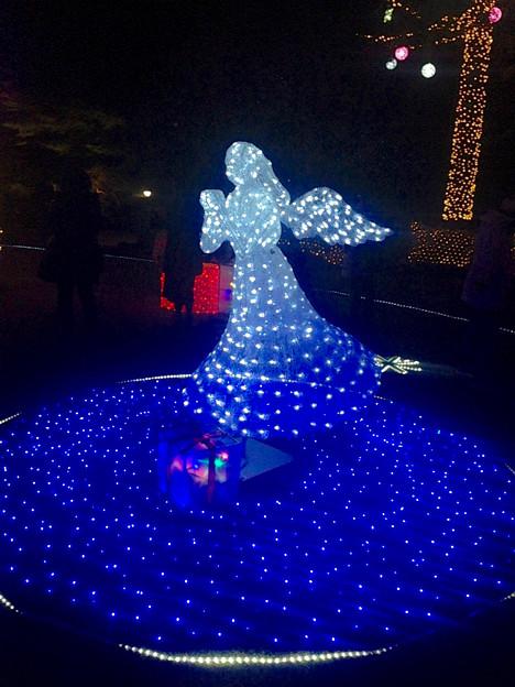 Photos: フラリエのクリスマスイルミネーション 2015「La Luce Blu」No - 12