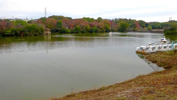 大高緑地公園 No - 28