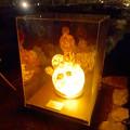 写真: 白鳥庭園「紅葉ライトアップ 2015」No - 115:ひょうたん型(?)の美濃和紙あかりアート