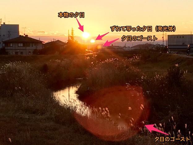 夕日の写真に写ったゴースト現象