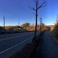 写真: 山下しずおが公約違反して勝手に土地の一部を売却しようとしてる、小牧市農業公園予定地 - 1