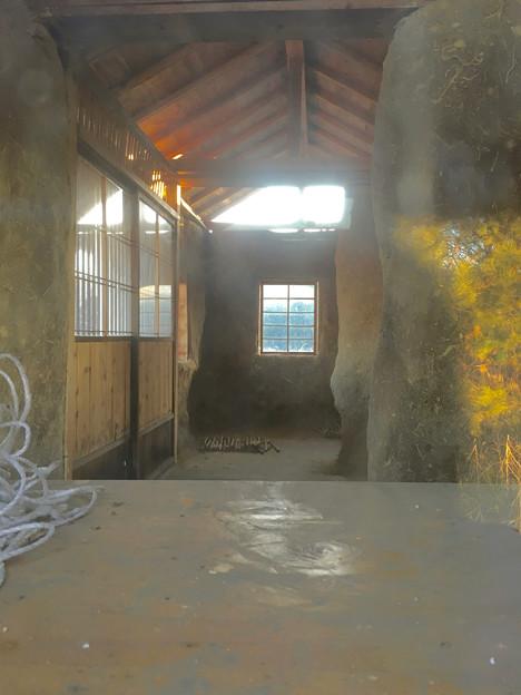 山下しずおが公約違反して勝手に土地の一部を売却しようとしてる、小牧市農業公園予定地 - 11:モリゾーの家(建物内部)