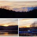写真: 庄内緑地公園:夕暮れ時のボート池周辺の景色 - 12
