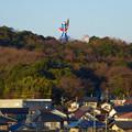 写真: イトーヨーカドー犬山店の駐車場から見た、モンキーパークの塔と観覧車 - 3