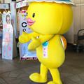 Photos: ナナちゃん人形前にいたメニコンのキャラ「メル助」 - 3