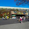 写真: 東山動植物園:正門前に新たにオープンした、飲食店兼土産屋「ズーボゲート」 - 1