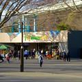 写真: 東山動植物園:正門前に新たにオープンした、飲食店兼土産屋「ズーボゲート」 - 3