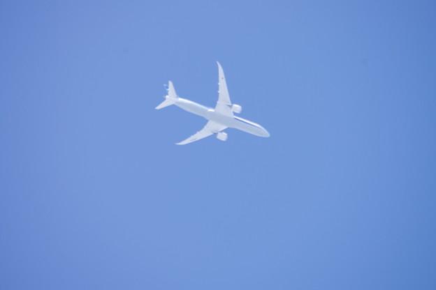 全日空787-9型