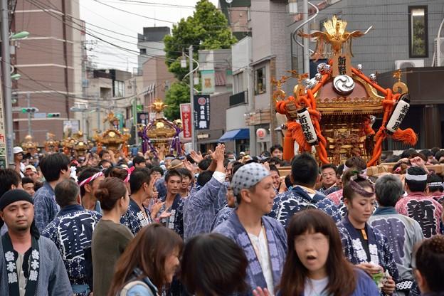Photos: 神輿行列