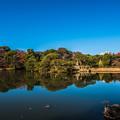 写真: 秋の六義園