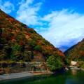 Photos: 立冬