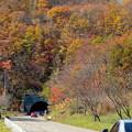 秋を探すドライブ