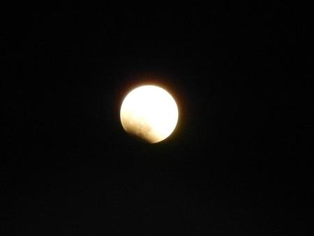 月食はじまりました・1