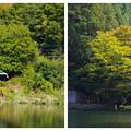 Photos: 湯布院 金鱗湖