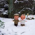 写真: 日本の雪に大興奮の外国人夫妻