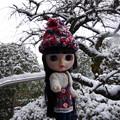 Photos: 彼女は雪の降るお外には出せません