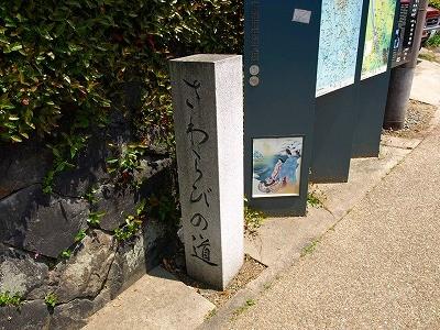 京都宇治P5042743