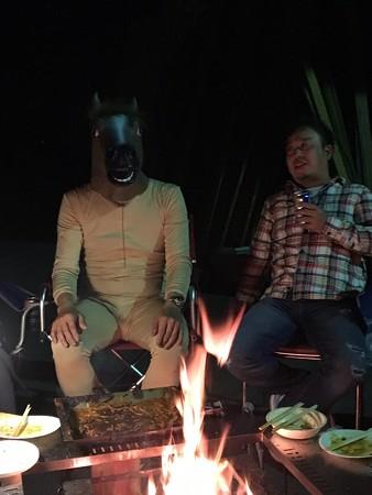 真面目な馬