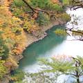 水殿ダム湖 9