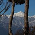 常念岳(アルプス公園から)