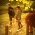 Photos: 散歩道.......