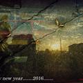 Happy new year.....2016.......